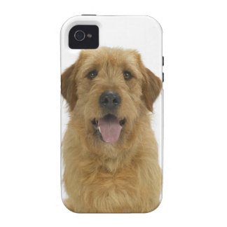 Dog on White 44 iPhone 4 Cover