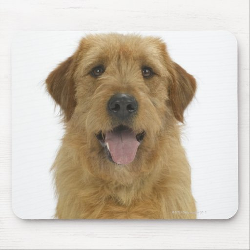 Dog on White 44 Mouse Pad