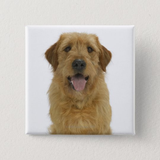 Dog on White 44 Pinback Button