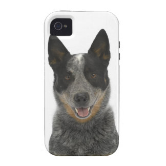 Dog on White 5 iPhone 4/4S Cases
