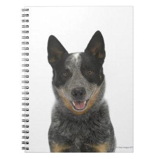 Dog on White 5 Spiral Notebook