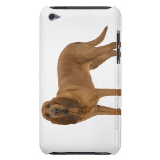 Dog on White 97 iPod Touch Case
