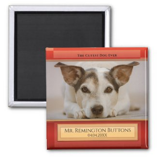 Dog or Cat Keepsake Memorial Custom Photo Magnet