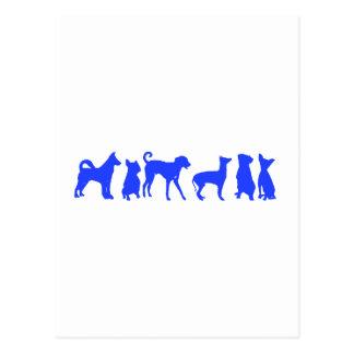 Dog Pack Postcard