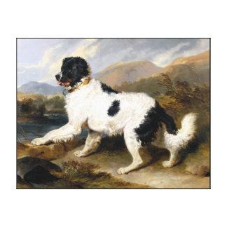 Dog painting 2 canvas print