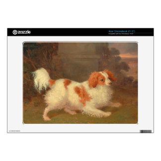 dog painting Blenheim spaniel Acer Chromebook Decals