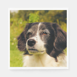 Dog Standard Luncheon Napkin