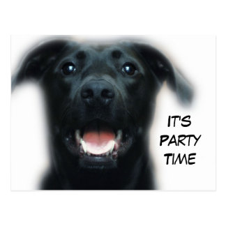 Dog Party Invitation Postcard