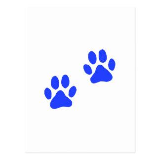 Dog Paw Prints Postcard
