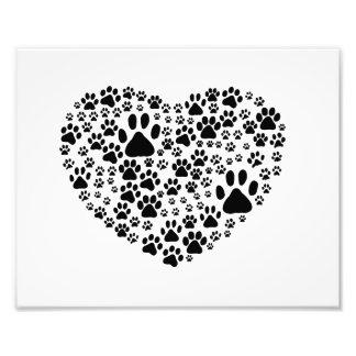 Dog Paws, Trails, Paw-prints, Heart - Black Photo Print
