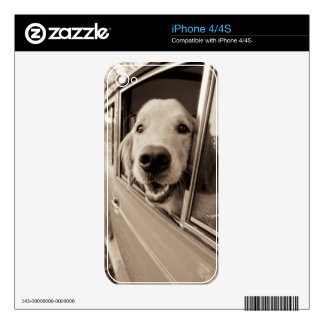 Dog Peeking Out a Car Window Decals For The iPhone 4