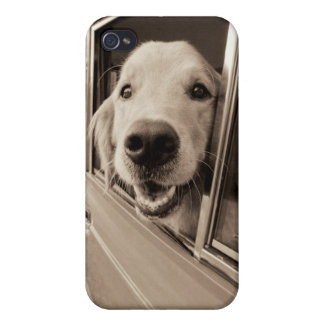 Dog Peeking Out a Car Window iPhone 4/4S Cover