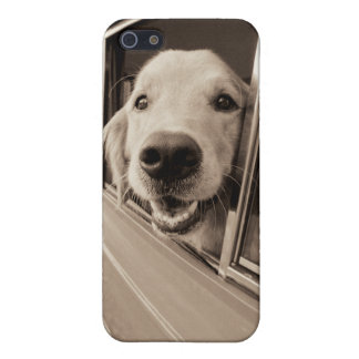 Dog Peeking Out a Car Window iPhone SE/5/5s Cover