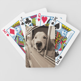 Dog Peeking Out a Car Window Bicycle Playing Cards