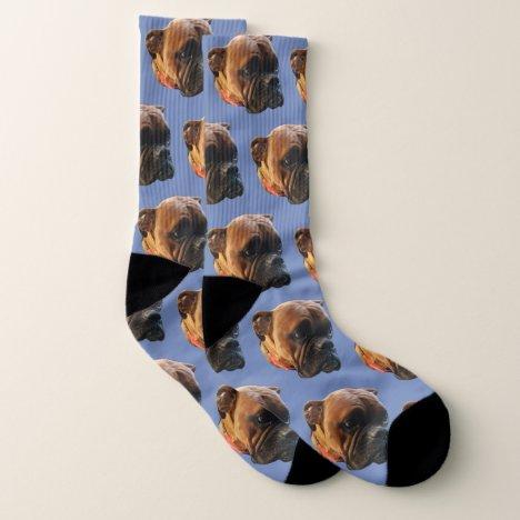 Puppy Socks
