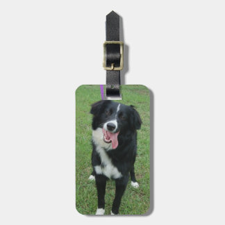 Dog Photo Luggage Tag