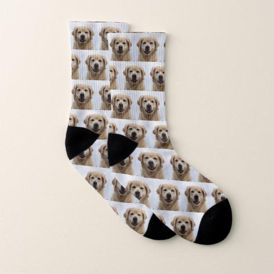 Dog   Photo Retriever Puppy Pet Socks