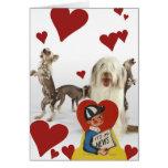 Dog Photo Vintage Valentine 16 Cards