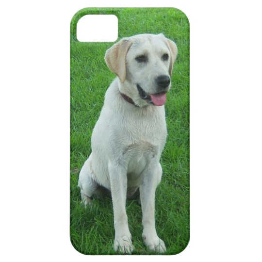 Dog Picture for Cute I Phone Case