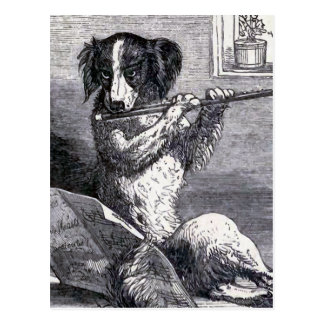 """Dog Playing the Flute"" Vintage Illustration Postcard"