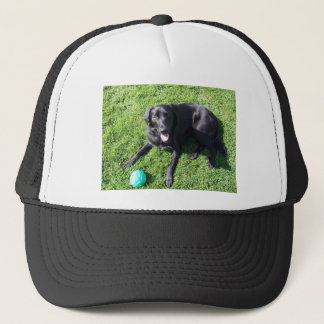 Dog playing with ball - happy Best Friends Trucker Hat