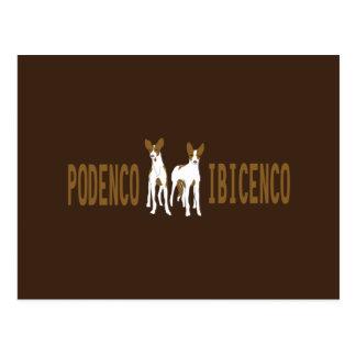 dog-Podenco Ibicenco Postcard