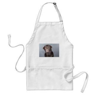 dog portrait adult apron
