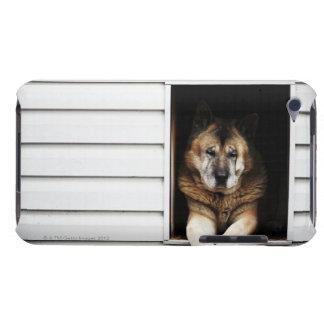 dog portrait Case-Mate iPod touch case