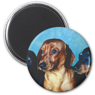 Dog Portrait Magnet