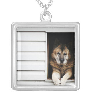 dog portrait silver plated necklace