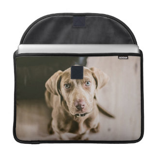 Dog portrait sleeve for MacBook pro