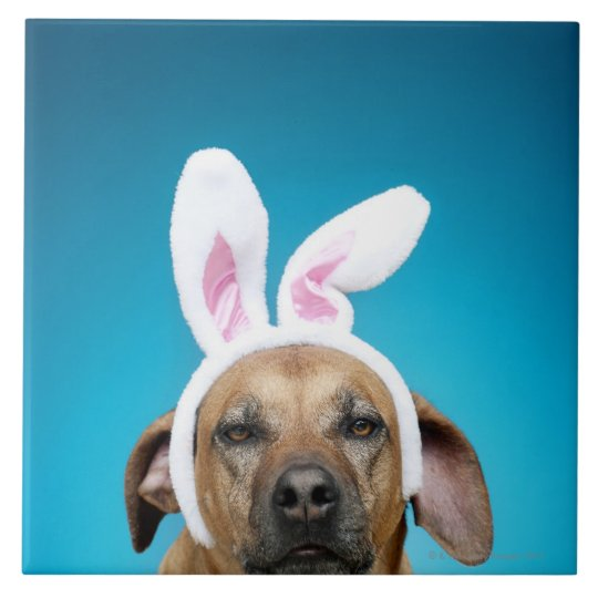Dog portrait wearing Easter bunny ears Ceramic Tile