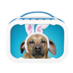Dog portrait wearing Easter bunny ears Yubo Lunchboxes