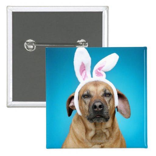 Dog portrait wearing Easter bunny ears Pins