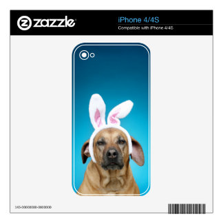 Dog portrait wearing Easter bunny ears Skin For The iPhone 4S