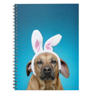 Dog portrait wearing Easter bunny ears Spiral Notebook