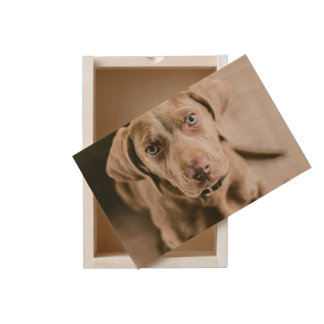 Dog portrait wooden keepsake box
