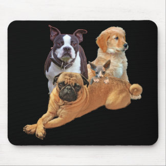 Dog posse with cat mouse pad