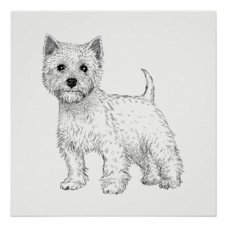 Dog Poster / Wall Art West Highland Terrier