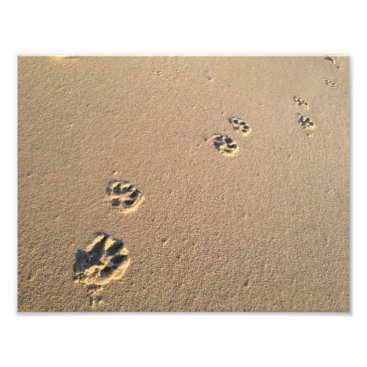 Beach Themed Dog Print in the Sand