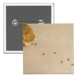 Dog Prints on Carpet 2 Inch Square Button