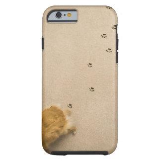 Dog Prints on Carpet Tough iPhone 6 Case