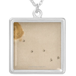 Dog Prints on Carpet Silver Plated Necklace