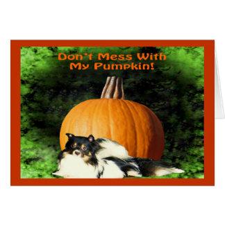 Dog Protecting Large Pumpkin Card