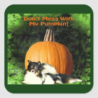Dog Protecting Large Pumpkin Square Sticker