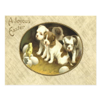 Dog Puppy Easter Chick Egg Postcard