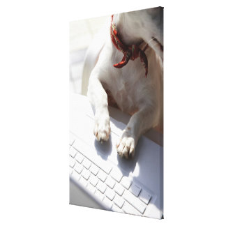 Dog putting his hands on a laptop canvas print