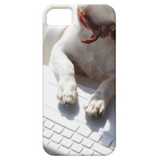 Dog putting his hands on a laptop iPhone SE/5/5s case