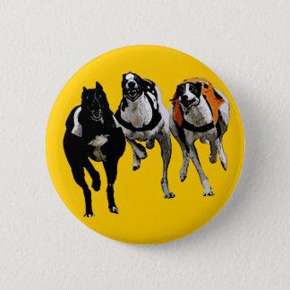 DOG RACE GREYHOUND PINBACK BUTTON