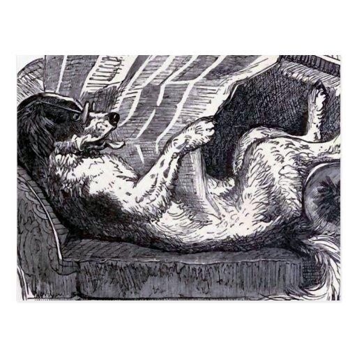 """""""Dog Reading Newspaper"""" Vintage Illustration Post Cards"""
